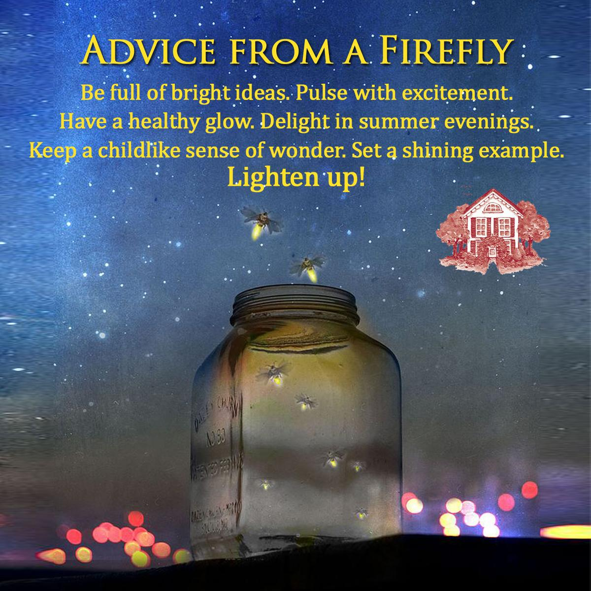 Advice From A Firefly Copy Eldercare At Home