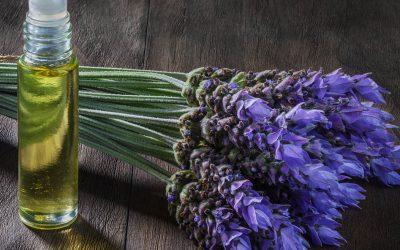 Tuesday Tips for Caregivers ~ 5 Natural Remedies for Soothing a Loved One with Anxiety