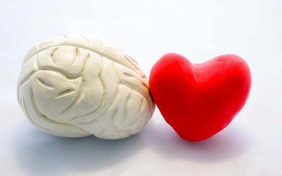 Tuesday Tips for Caregivers ~ How Heart Health & Brain Health Go Together